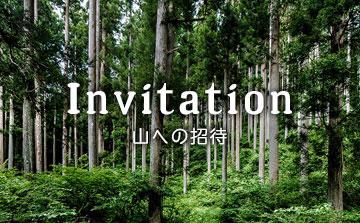 山への招待